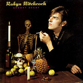 Robyn Hitchcock - Live in Concert